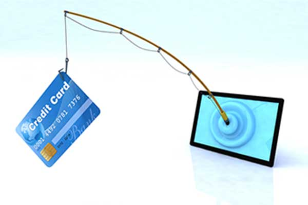 phishing-cat-page